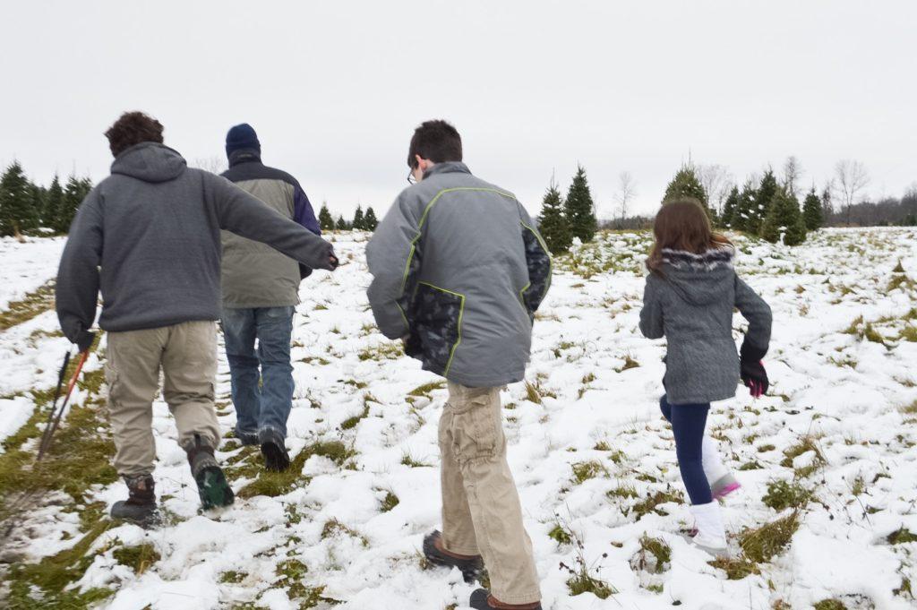 christmas-tree-walking-through-field
